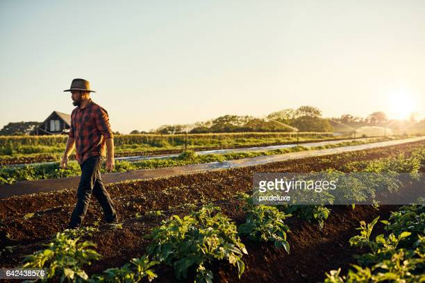 Healthy crops are a farmer's reward
