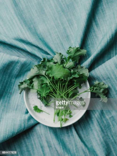 Healthy food still life fresh cut baby leaf green kale