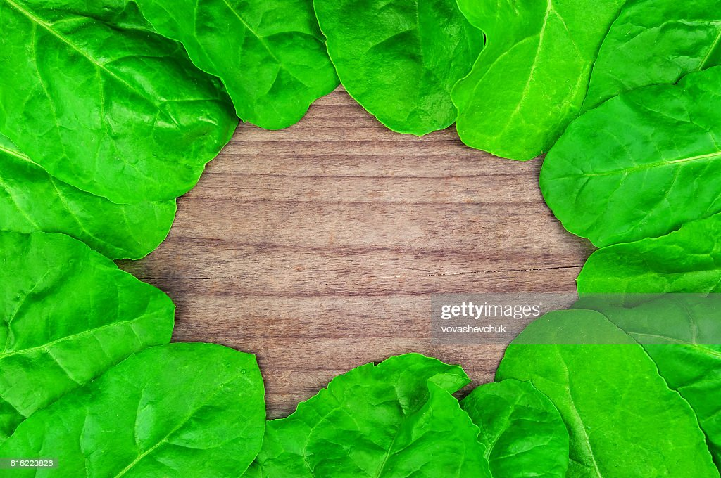 healthy spinach texture : Stockfoto