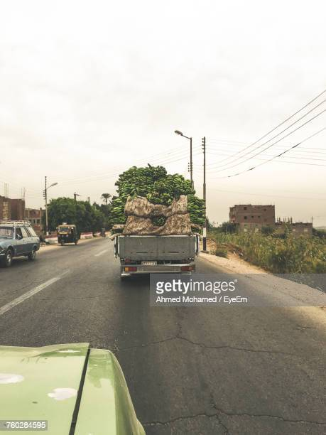 Heap Of Bananas In Truck Moving On Road Against Sky