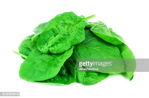 heap of green spinach : Foto de stock