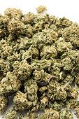 Heap of Marijuana on White Background