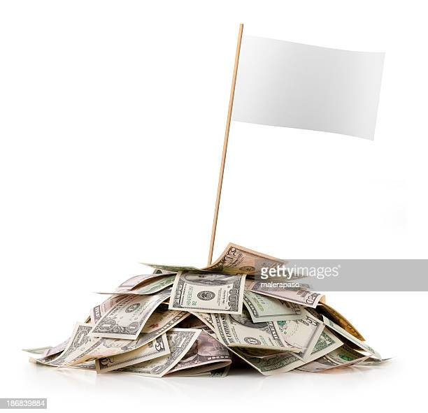 Heap of money with white blank flag