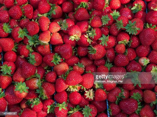 Heap of strawberries, full frame