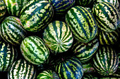 Heap of watermelons, close-up