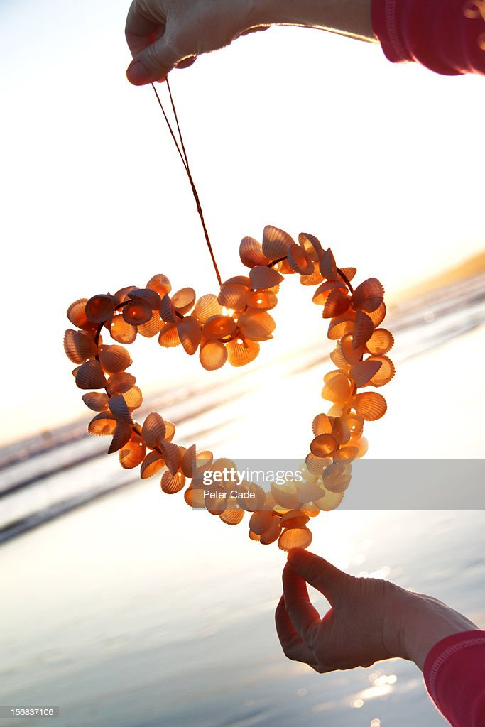 heart made of shells being held on beach : Stock Photo