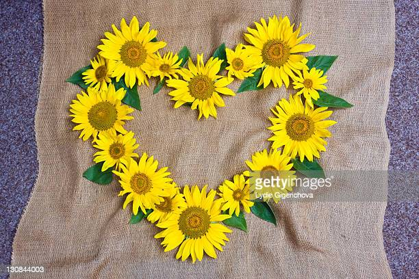 Heart made of sunflowers