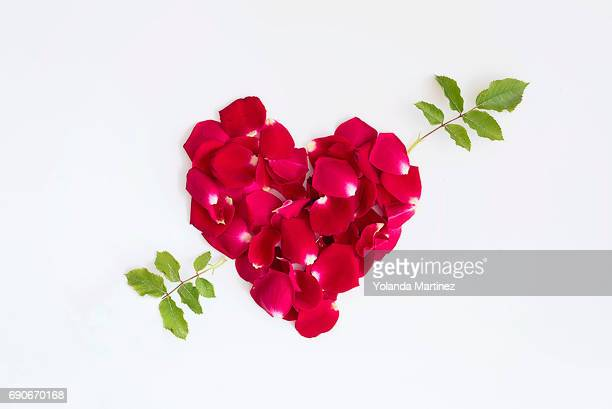 Heart made with rose leaves