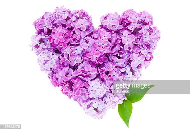 Coeur de fleurs Lilas