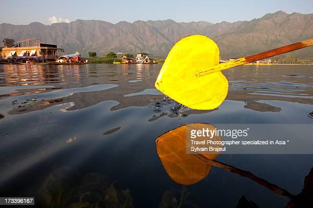 Heart paddle - Srinagar - Kashmir