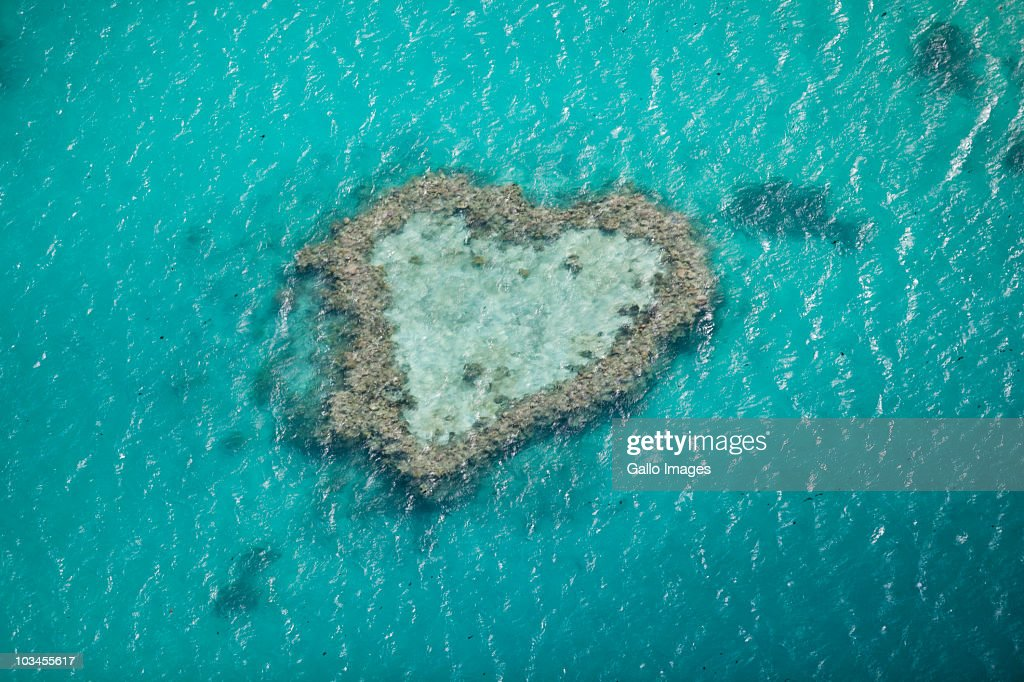 Heart Reef, Great Barrier Reef, Queensland, Australia : Stock Photo