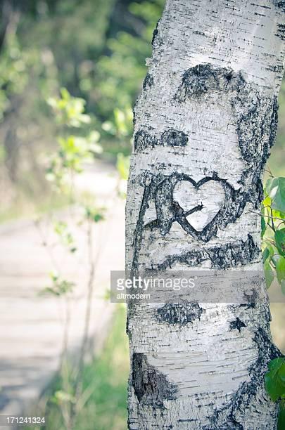 Coeur-valentine thème ou un concept de l'Amour