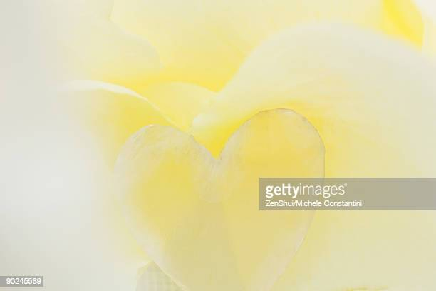 Heart-shape on a yellow background