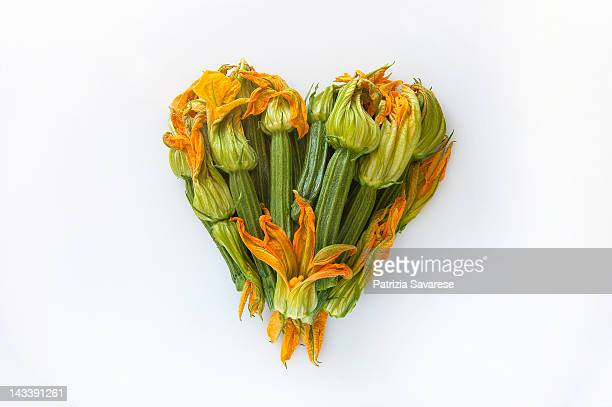Heart-shaped formed by fresh Zucchini