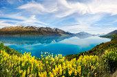 Heavenly reflection, Lake Wakatipu