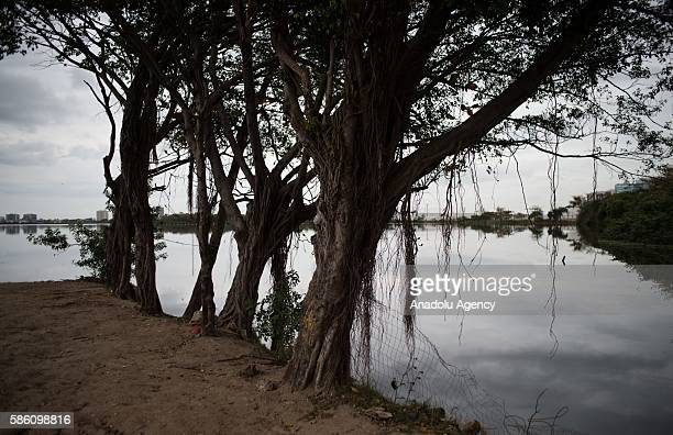 Heavily polluted rivers and lakes are seen in Rio De Janeiro Brazil on August 05 2016 Distance from the opening of the Rio 2016 Olympics less 1 day...