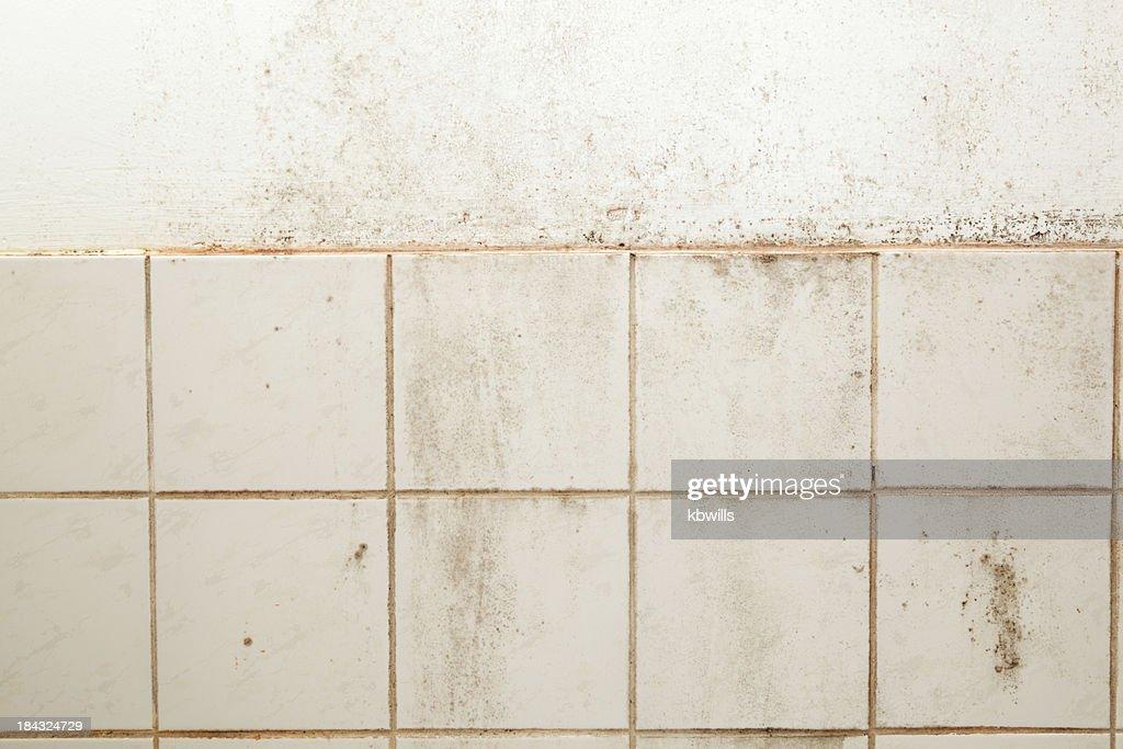 heavily soiled mouldy bathroom tiles and wall