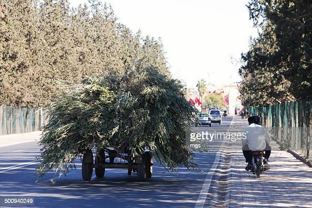 Heavy load at Marrakesh street