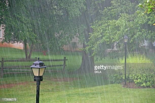 Heavy rain in  the park