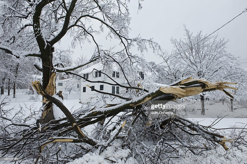 Heavy snow brought down branches after a snowstorm hit the midwest February 26, 2013 in Merriam, Kansas. This is the second major snowstorm the midwest has seen this week dropping a half-foot or more of snow across Missouri and Kansas and cutting power to thousands.