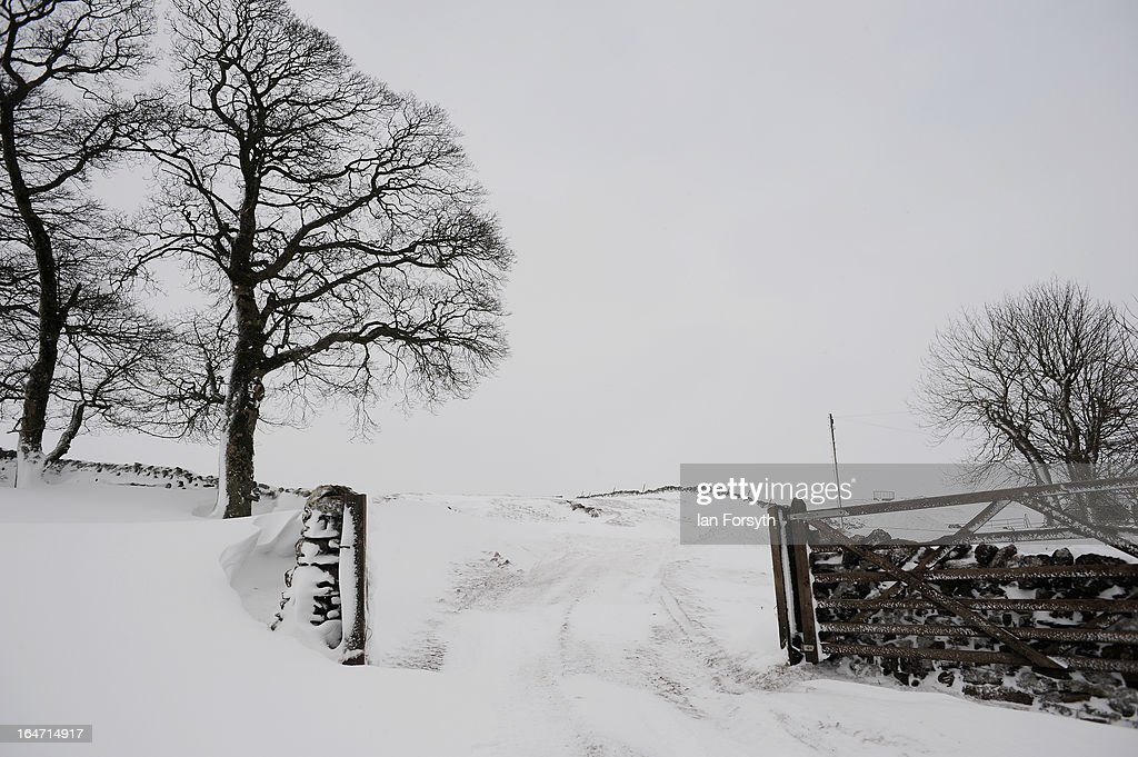 Heavy snow drifts up against a gateway near to Bowes in County Durham on March 27, 2013 in Bowes, England. Heavy snow continues to fall in some parts of the country as Britain suffers the coldest March in 50 years.
