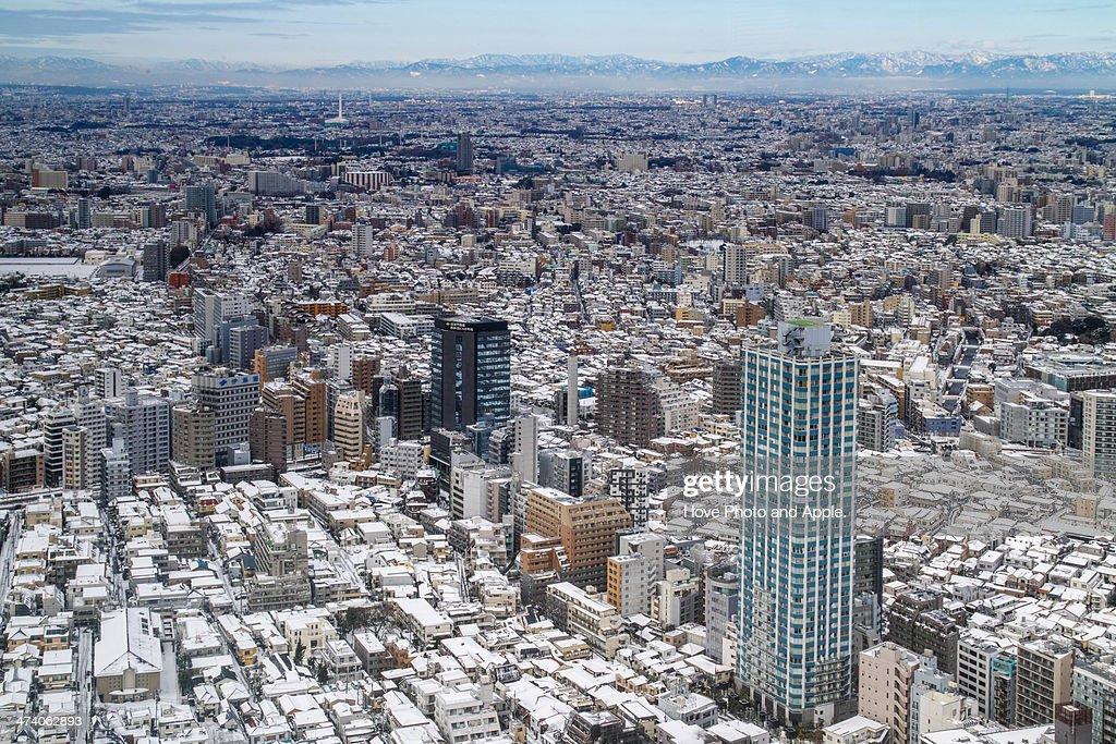 Heavy snow Tokyo : Stock Photo