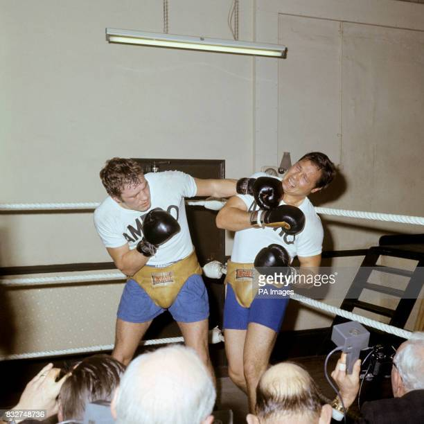 Heavyweight Boxer Billy Walker spars with American Buddy Turman during training in London