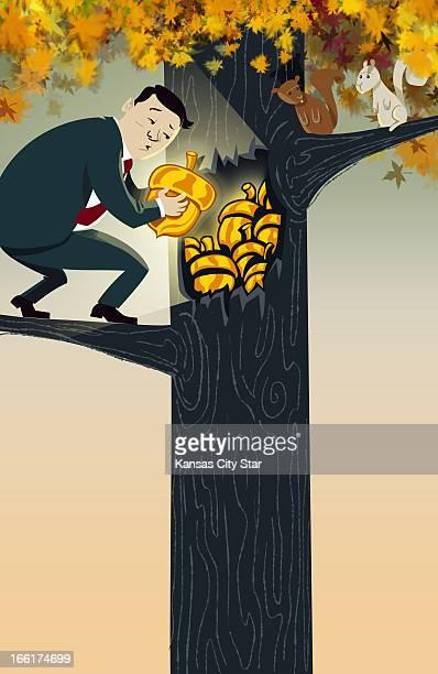 Hector Casanova color illustration of a man hoarding golden acorns in a tree