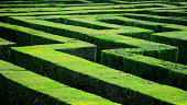 Hedge maze in Barcelona (Laberint d'Horta)
