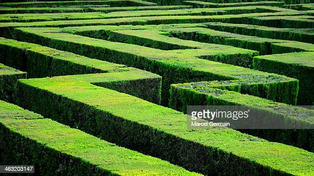 Hedge maze in Barcelona (Laberint d'Horta)