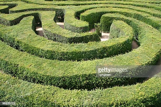 Haie Labyrinthe deux