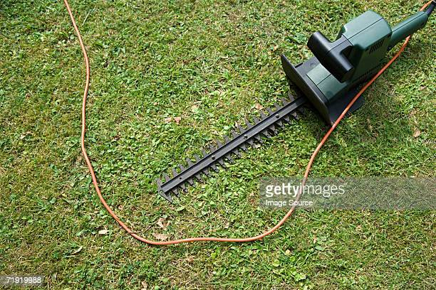 A hedge trimmer