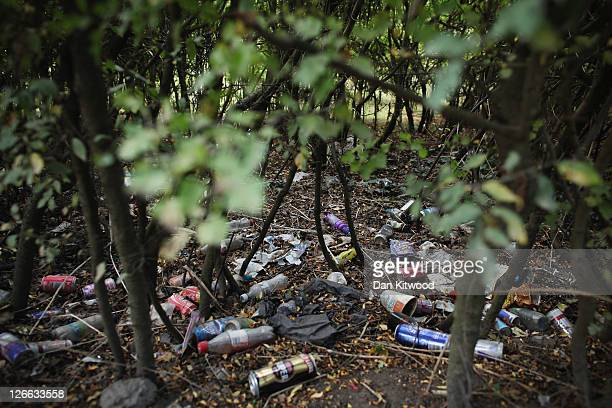 A hedgerow is strewn with litter outside the Dale Farm travellers camp at Crays Hilll on September 26 2011 near Basildon Essex England The High Court...