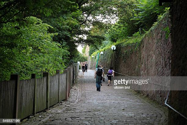 Heidelberg Burgweg to the Heidelberg castle ruin Schlossweg footpath hiking trail people tourists