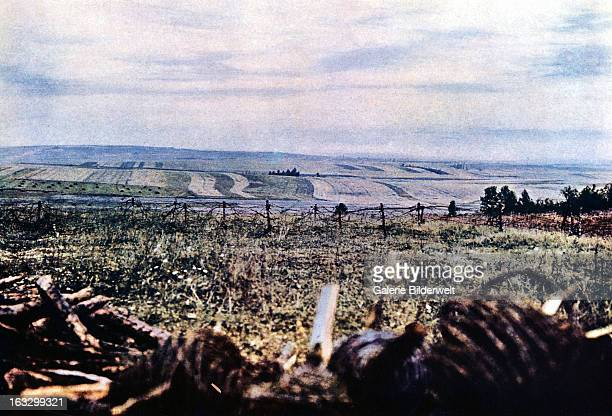 Height 304 with barbed wire near Verdun September 1916 Battle of Verdun Western Front World War I France Autochrome Lumière Photo Jules...