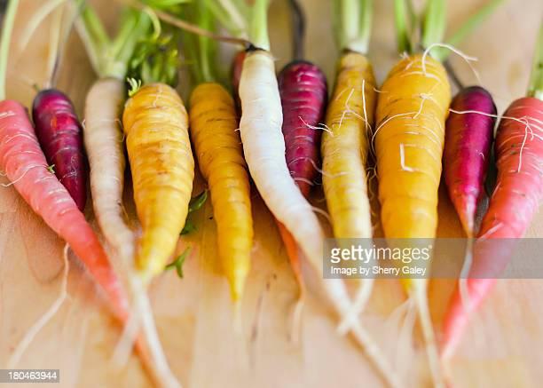 Heirloom carrots from garden