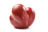 Heirloom fresh juicy red tomato irregular in shape isolated closeup