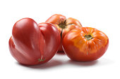 Heirloom fresh juicy tomatoes irregular in shape isolated closeup
