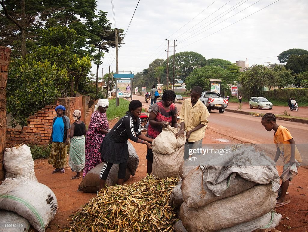 Helen (3rd R) and Diana Turyanabo (4th R) sell banana peelings on the roadside in the Ugandan capital, Kampala, on December 18, 2012. Helen, 23, along with her younger sister Diana, 20, living in a trash ridden slum area, are two young women who stand out amongst their neighbours as they both are professional boxers, literally trying to fight their way out of poverty. After a man tried to rape Helen, the older of the two sisters, it inspired her to learn how to fight inorder defend herself, and despite recently winning a medal in an East African Regional Championship, Helen and Diana still have to collect garbage to sell to get money for food for themselves and nearly 20 other people, cramped into two rooms with no water or electricity. AFP PHOTO/Michele Sibiloni.