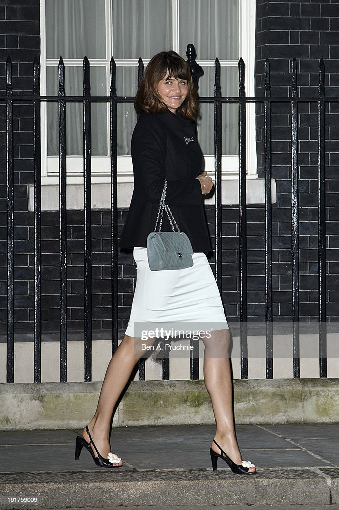 <a gi-track='captionPersonalityLinkClicked' href=/galleries/search?phrase=Helena+Christensen&family=editorial&specificpeople=202841 ng-click='$event.stopPropagation()'>Helena Christensen</a> attends the Downing Street reception during London Fashion Week Fall/Winter 2013/14 at 10 Downing Street on February 15, 2013 in London, England.