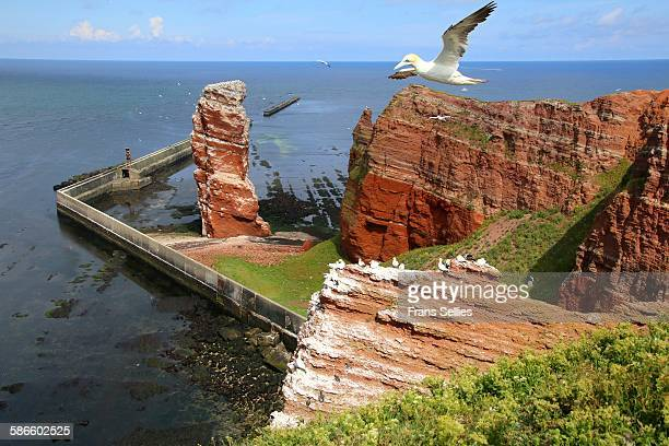 Helgoland with Lange Anna