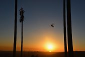 Helicopter over Griffith Park, Los Angeles, California