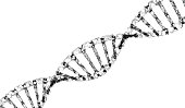DNA, helix model in healthcare and medicine and technology concept on white background, 3d background illustration