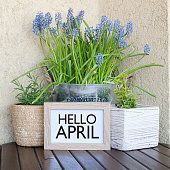 April, spring, greeting