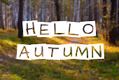 hello autumn, text over blurred wild fall forest