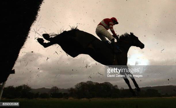 Hell's Bay ridden by Ruby Walsh takes a jump during the Oldfield Beginners' Steeple Chase at Ludlow Racecourse