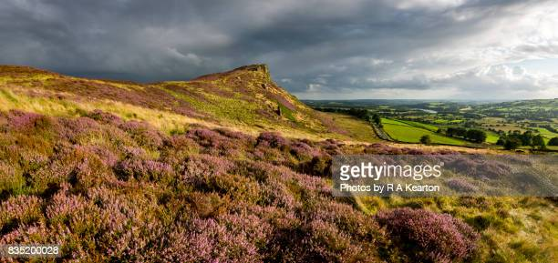 Hen Cloud and purple heather, The Roaches, Staffordshire, England