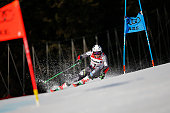 SWE: FIS World Ski Championships - Men's Giant Slalom