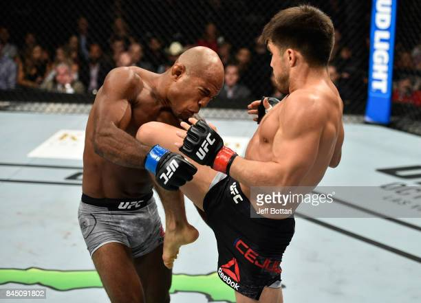 Henry Cejudo knees Wilson Reis of Brazil in their flyweight bout during the UFC 215 event inside the Rogers Place on September 9 2017 in Edmonton...