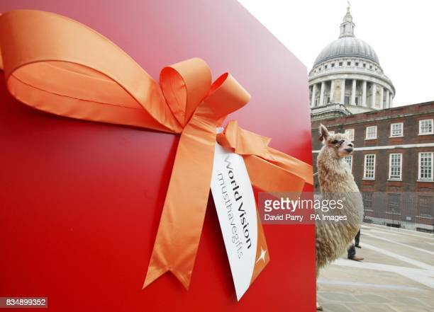 Henry the Llama emerges from a giant gift box in Paternoster Square London for the launch of World Vision Must Have Gifts
